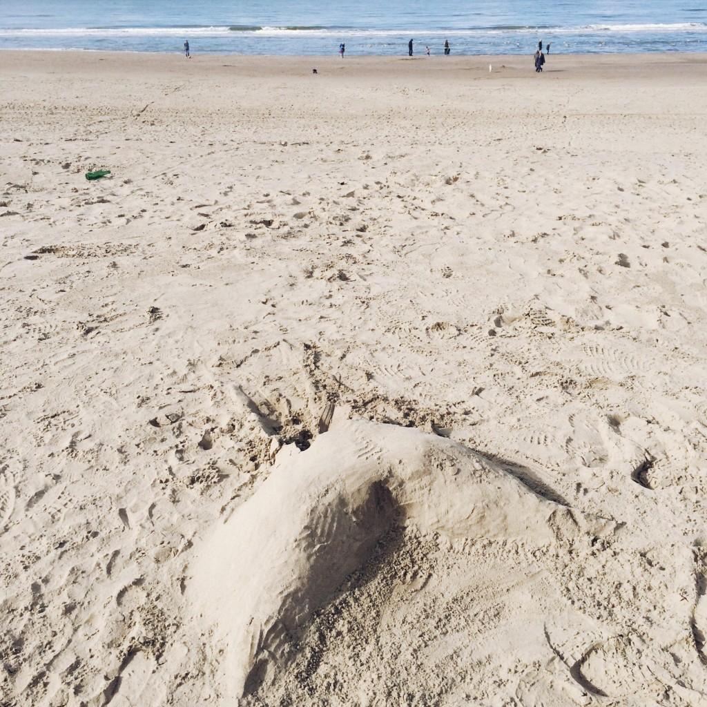 tail beach